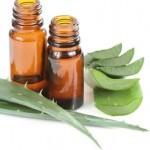 Properties of Aloe vera